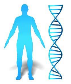 man, DNA